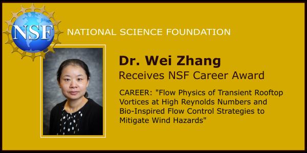 Dr Wei Zhang NSF Career Award